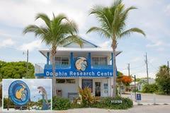 Centre de recherche de dauphin Image libre de droits