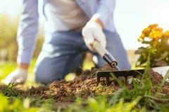 Centre sélectif d'un outil de jardinage Images libres de droits