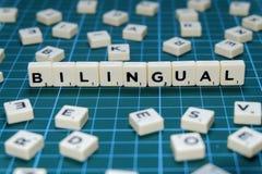 Centre sélectif de mot bilingue sur le fond vert carré de tapis photo libre de droits