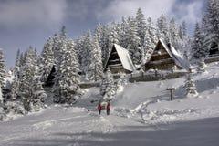 centrez l'hiver couvert de neige de ski Photos libres de droits