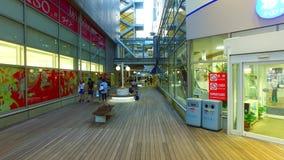 Centro comercial de Odaiba de las cubiertas en Odaiba, Tokio Japón almacen de metraje de vídeo