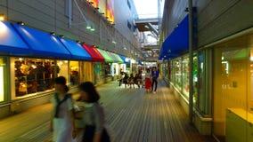 Centro comercial de Odaiba de las cubiertas en Odaiba, Tokio Japón metrajes