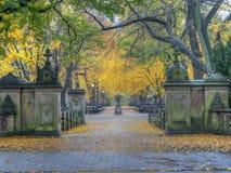 Centro commerciale del Central Park in autunno immagini stock libere da diritti