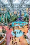 Centro commerciale dell'America durante la giornata indaffarata Fotografia Stock Libera da Diritti