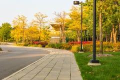 Centro congressi moderno dell'hotel nella posizione isolata in alberi e immagini stock libere da diritti