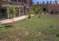 Centro da cidade que jardina em Joanesburgo, África do Sul fotografia de stock
