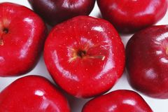 Centro da vista superior, maçã vermelha cercada por maçãs no fundo branco foto de stock royalty free