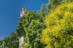 Centro de ciudad de Bitola, Macedonia - torre de reloj Imagen de archivo libre de regalías
