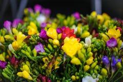 Centro de flores Fotos de archivo libres de regalías