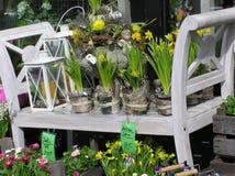 centro de flores Imágenes de archivo libres de regalías