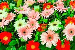 Centro de flores con el Gerbera Foto de archivo
