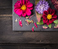 Centro de flores con las dalias en la tabla oscura, fondo foto de archivo
