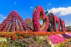 Centro de flores del paisaje bajo la forma de corazón y picos Fotografía de archivo libre de regalías