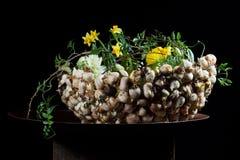 Centro de flores exquisito con las setas y los narcisos fotos de archivo