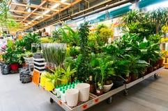Centro de jardín Imagen de archivo libre de regalías