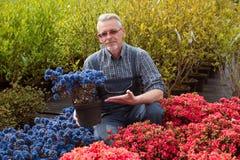 Centro de jardinería del encargado cerca de la ventana de la tienda con las flores Él está sosteniendo una maceta imágenes de archivo libres de regalías