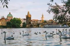 Centro de la ciudad viejo de Praga Imágenes de archivo libres de regalías