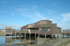 Centro de la línea de la playa de Hayward Imagenes de archivo