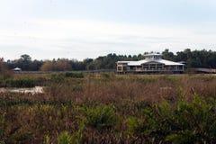 Centro de la naturaleza en Cay Wetlands verde Imagen de archivo libre de regalías