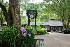 Centro de la orquídea en el jardín botánico de Singapur Imágenes de archivo libres de regalías