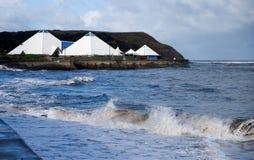 Centro de la vida de mar Fotografía de archivo