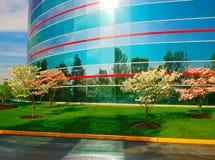 Centro di affari Immagini Stock