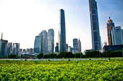 Centro di finanza internazionale di Guangzhou Fotografie Stock Libere da Diritti