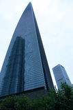 Centro finanziario del mondo di Shanghai Immagine Stock