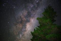 Centro galáctico con el árbol en primero plano Imagen de archivo libre de regalías