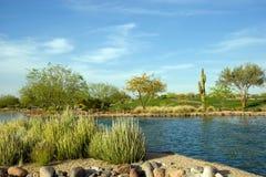 Centro turístico de Scottsdale Fotos de archivo libres de regalías