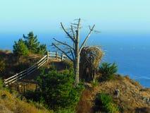 Centro turístico de Treebones Fotos de archivo