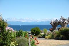 Centro turístico del martín pescador - mar de Salish Fotos de archivo libres de regalías