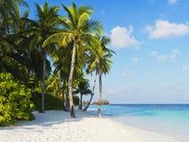 Centro turístico tropical Fotos de archivo libres de regalías