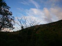 Centro turístico del bosque Imagenes de archivo