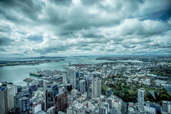 Centro urbano de Auckland Fotos de Stock