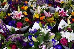 Centros de flores Imágenes de archivo libres de regalías