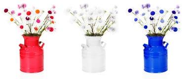Centros de flores blancos y azules rojos Imagenes de archivo