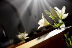 Centros de flores hermosos de la boda a lo largo del pasillo Fotos de archivo libres de regalías