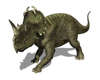 Centrosaurus Dinosaur. The Centrosaurus dinosaur lived during the Late Cretaceous period - 3d render Stock Images