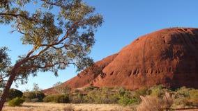 centrum czerwone olgas australii Obraz Royalty Free
