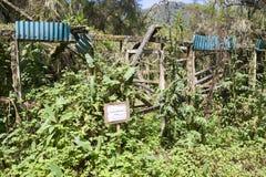 centrum karisoke badania ruiny Fotografia Stock