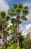 centrum konwencji Zdjęcie Stock