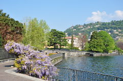 Centrum miasta jeziorny Como Włochy Fotografia Royalty Free