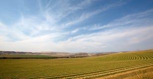 Centrum pivot gospodarstwo rolne fotografia royalty free