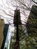 Centrumbyggnad och träd arkivfoto