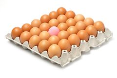 Century egg and chicken eggs Royalty Free Stock Photo