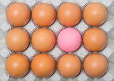 Century egg among chicken eggs Royalty Free Stock Image