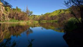 Century Lake Reflections stock photo