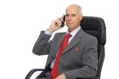 CEO Royalty Free Stock Photos