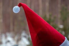 Ceoure vermelho do gnomo fotografia de stock royalty free